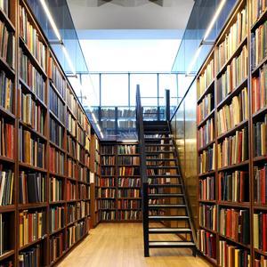 Библиотеки Ельни